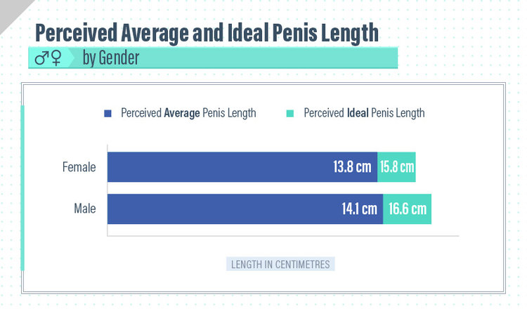 is a six inch dick big