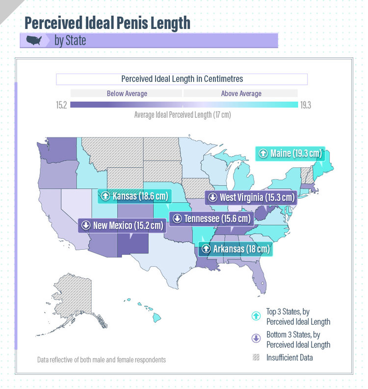 whats the perfect penis size
