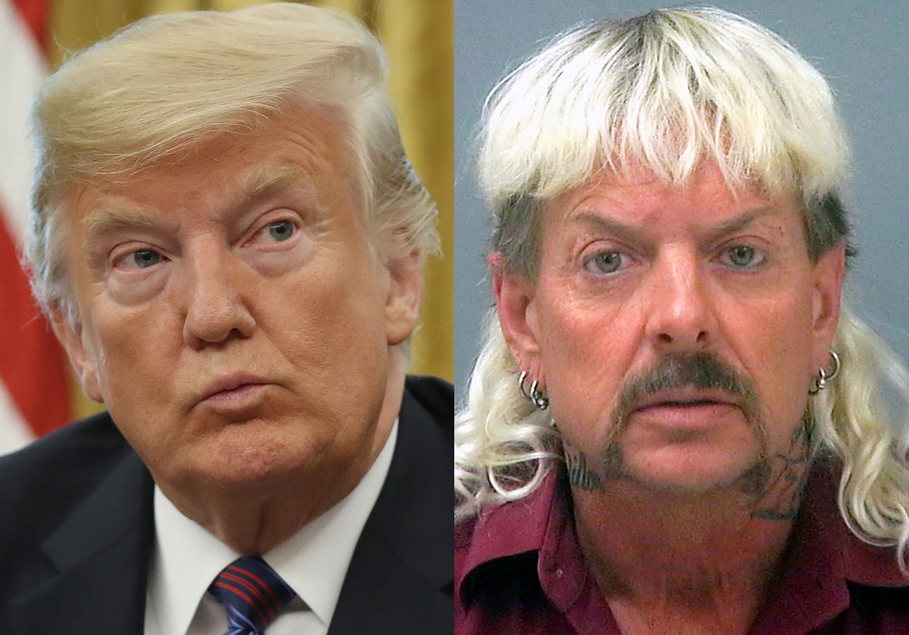 Trump Joe Exotic G