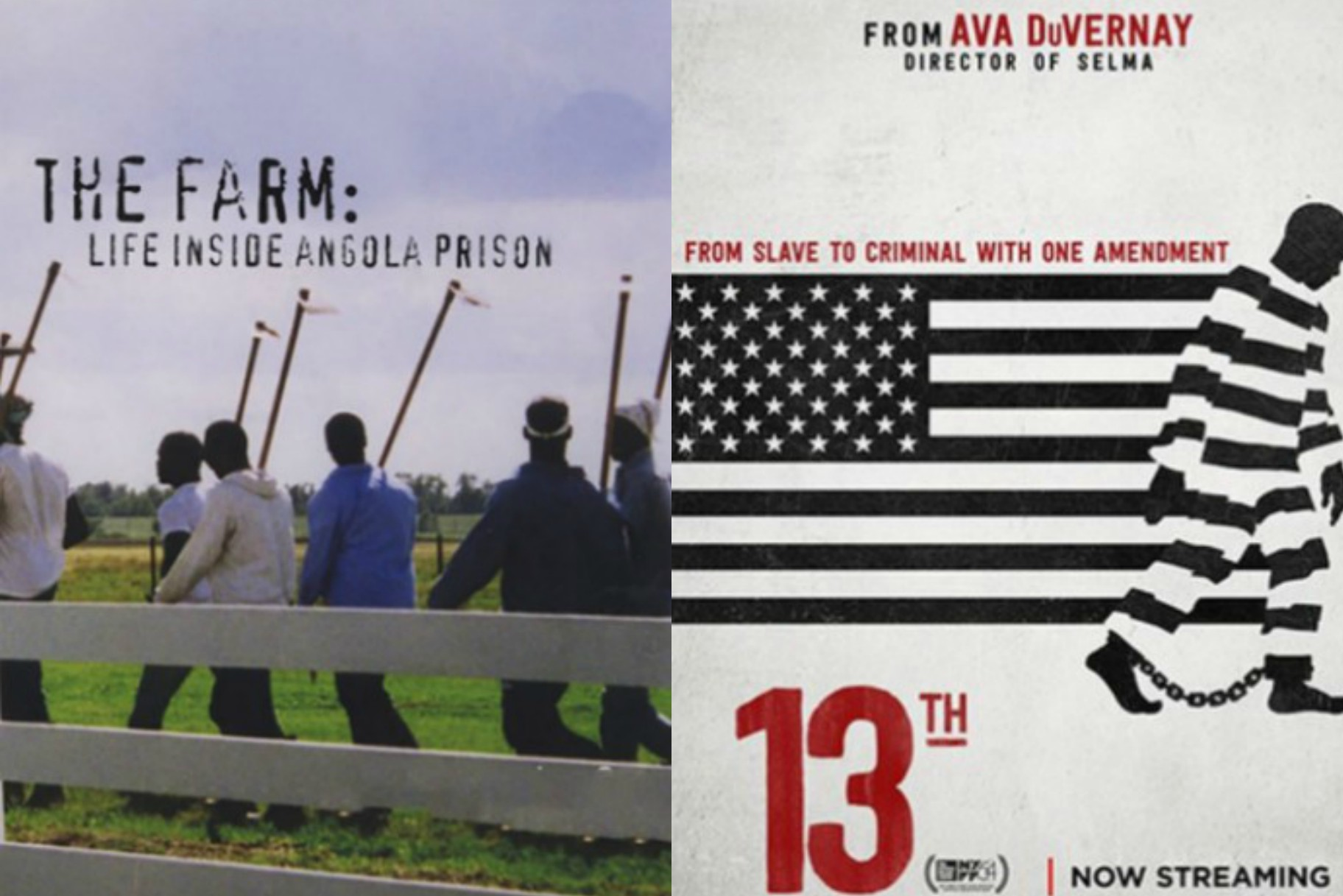 5 Movies You Should Watch About the Prison System | Very Real