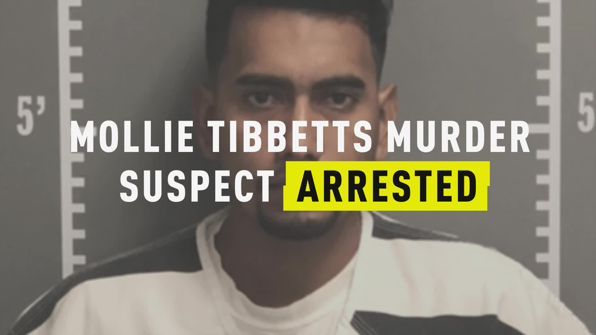 Mollie Tibbetts Murder Suspect Arrested