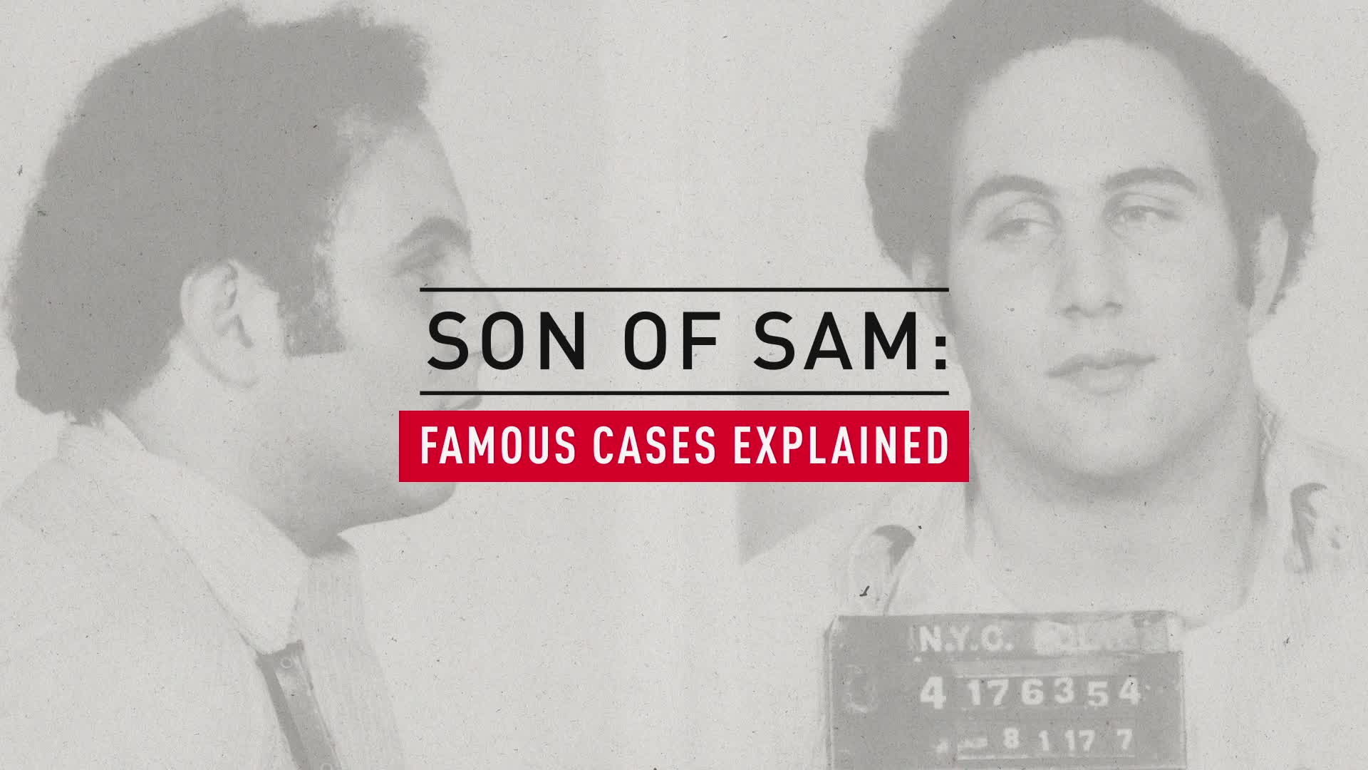 Son of Sam, Explained