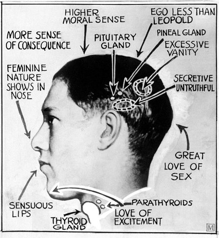 phrenology diagram of Richard Loeb