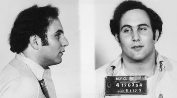 David Berkowitz Mok 202 4