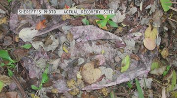 Caylee Anthony Theories About The Duct Tape Found With Remains