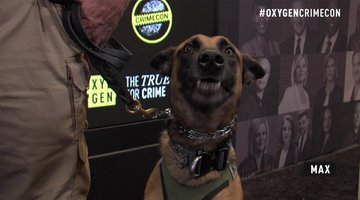Trainer Breaks Down Job Of K9 Dogs And Proper Etiquette | CrimeCon