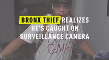 Bronx Thief Realizes He's Caught on Surveillance Camera